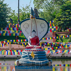 Buddhist Sector Tour Package India